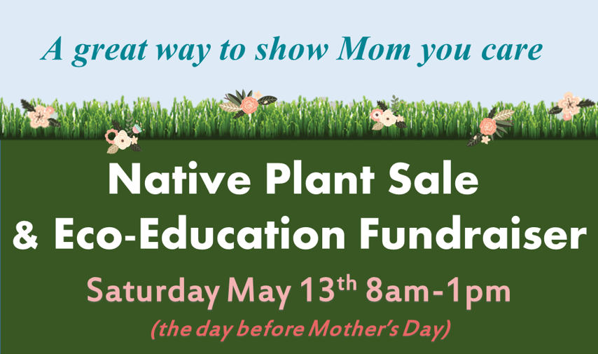 Plant Sale Flier top